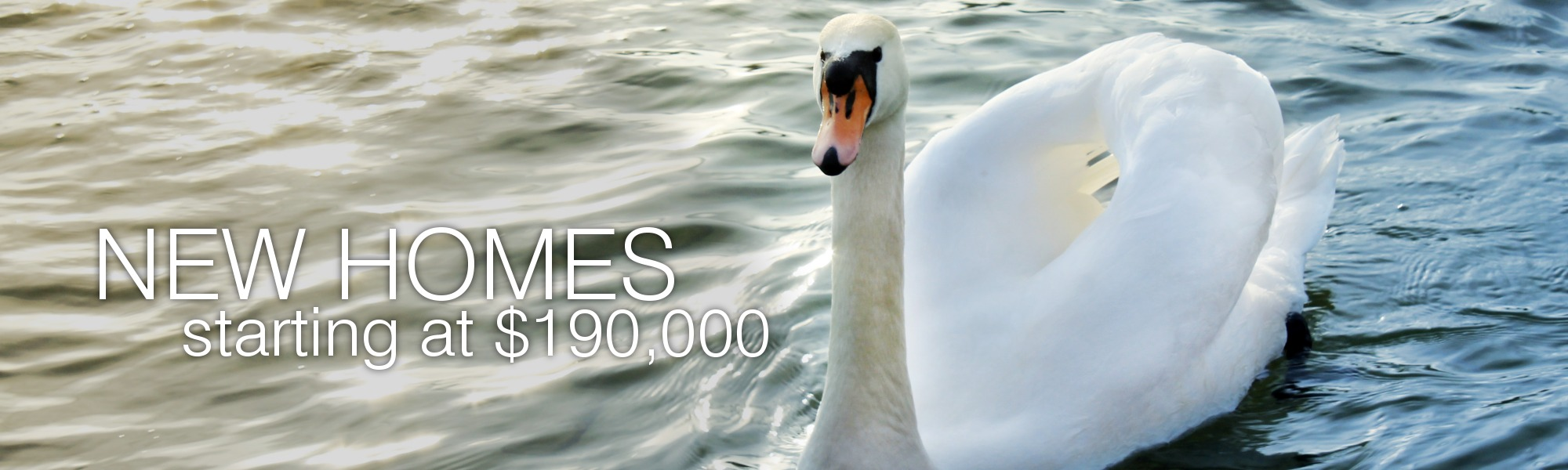 5 Open House Models To View